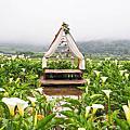 名陽匍休閒農莊