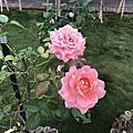 羅莎玫瑰莊園已儲存至地圖蘿莎山莊