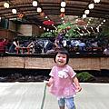 帶著阿桃去旅行-京都篇