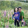2020--卉卉十一歲生日!