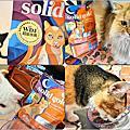 【網路。宅配】Solid Gold 速利高★貓在屋頂曬月亮/低敏全年齡超級寵糧/寵物超級食物