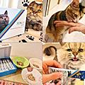 【寵物。保健】木入森Moreson★貓咪排毛粉/洋車前子天然纖維/專業酵素