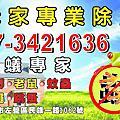 禾家專業 白蟻 蟑螂 消毒 除蟲-高雄 台南 屏東 免費估價 成效保固 (07)342-1636