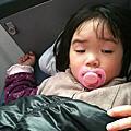 2011.03.11-03.14回花蓮掃墓