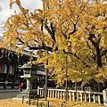 京都秋之旅 Day4