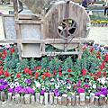 台南花卉展