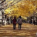 2013東京三日小旅行