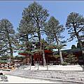 2017日本京都櫻花祭【平安神宮】