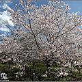 2017日本京都植物園