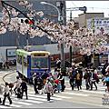 201904日本東京賞櫻【荒川線。飛鳥山】
