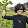 10-0121 新埔摘蘿蔔
