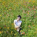 2007-7-8淡水花海節