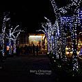 【夜景】遲來的聖誕節