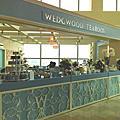 WEDGWOOD一個人的小午餐