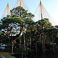 2013日本二度蜜月去~兼六園、東茶屋街、近江町