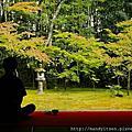 禪與茶。高桐院