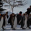 2012 春節北海道旭山動物園