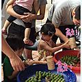 鶯歌陶博館玩醃脆梅!