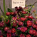2009/05/30 X JAPAN in TAIPEI  勢在必行之夜