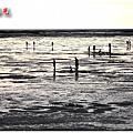 100828-新竹17公里海岸線