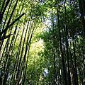 2005-12-03 霞喀羅 12公里健行