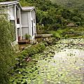 2007-11-05 後湖水月