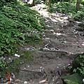 2005-04-30 石門山健行