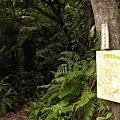 2006-04-09 打鐵寮 白石山健行