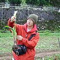 200404 陽明山採海芋