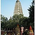 印度-菩提迦耶