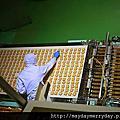 【遊】北海道。白色戀人石屋工廠