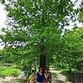花蓮-雲山水  Jun-2009