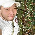 201004 桐花季