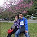 20130202_小小賞櫻趣@石門水庫