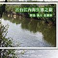 台江國家公園(台南四草)