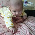BABY1113-1114