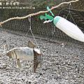 【2013關西自由行】和歌山川湯温泉~大村屋民宿