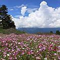 201009福壽山農場