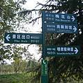 南京中山陵梅花谷公園(秋冬)