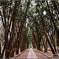 【南投☆竹山】台大實驗林&下坪熱帶植物園