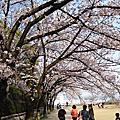 Day 5 -- 四天王寺, 大阪城