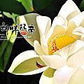 20140911am_湖畔江南古厝