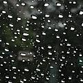 颱風。台北。雨景