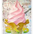2007 大阪京都賞櫻行