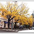 2016.10.27~11.02姐就是城市女孩東京我愛你小旅行day2