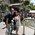 ⓝⓔⓦ〝♡ 2015♥日本5天4夜♥京都♥大阪♥奈良♥梅花鹿♥黑門市場♥心齋橋♡
