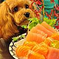 2013/08/25 三峽插角綠光&八條壽司