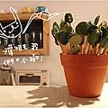 仲春‧小樹咖啡