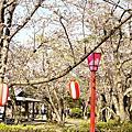2013_3月京阪神奈五日遊_Day 1