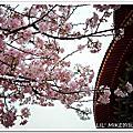 2012-03-16 新北市淡水區 - 天元宮